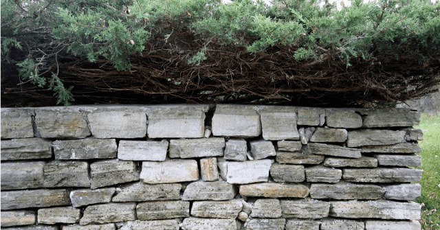 Stone for retaining wall